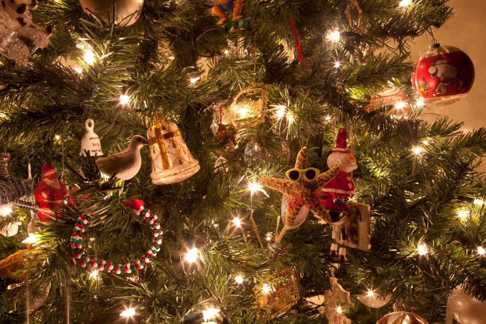 My Christmas Tree {Ruckersville, Va. Photographer} (6/6)