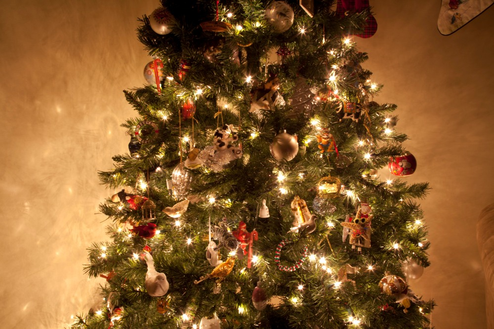 My Christmas Tree {Ruckersville, Va. Photographer} (1/6)