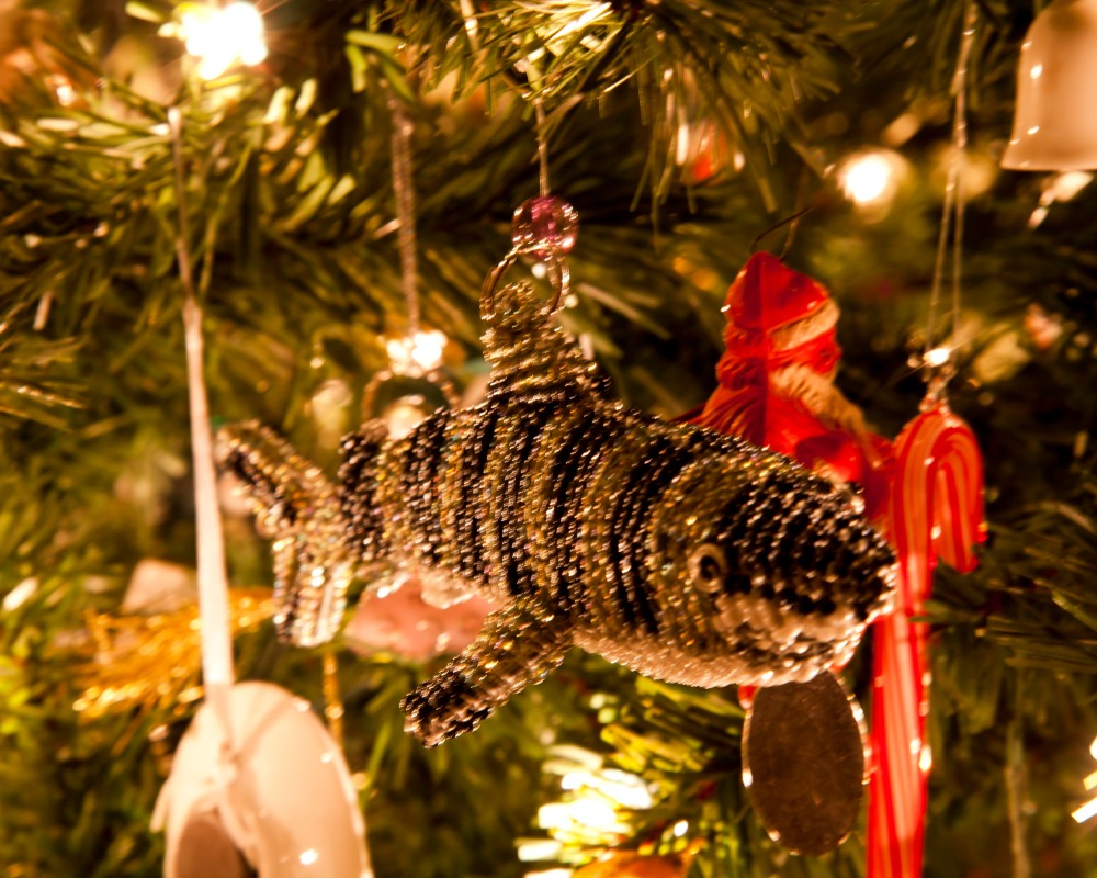 My Christmas Tree {Ruckersville, Va. Photographer} (4/6)