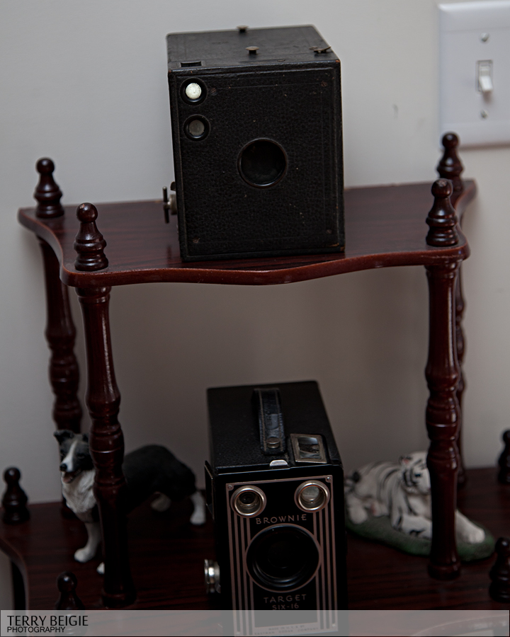 My two vintage cameras. The Brownie below and the one above was my great-grandmother's. It dates to WWII